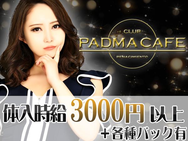 PADMACAFE/すすきの画像37671