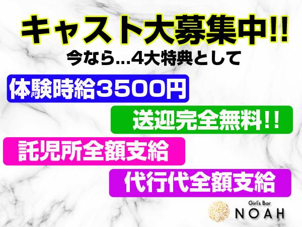 ノア/太田の求人