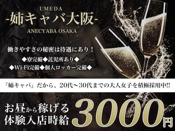 姉キャバ大阪(昼)/梅田の求人