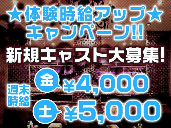 ビビクラブ/高崎の求人