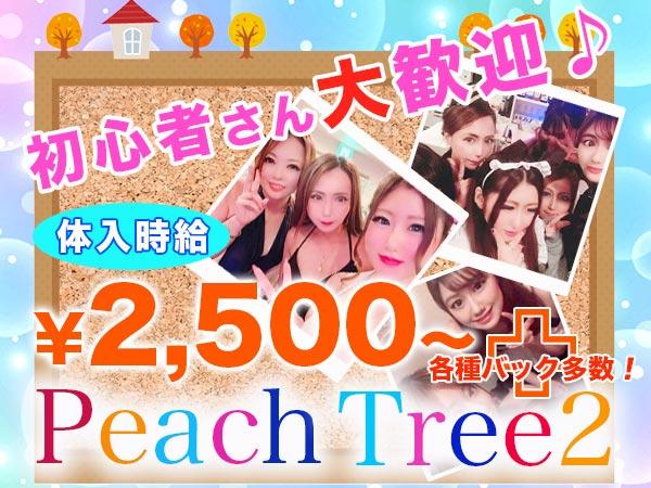 ピーチツリー2/植木の求人