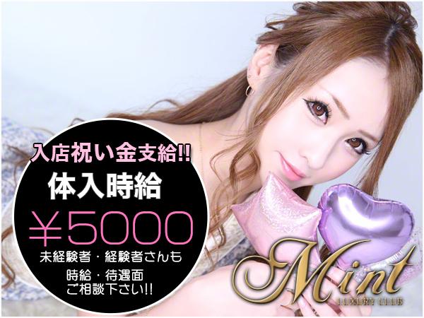 ミント/上野の求人