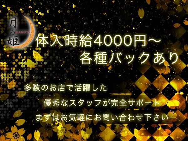 月乃姫/赤坂の求人