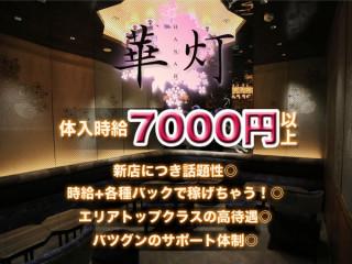 華灯/歌舞伎町画像36040